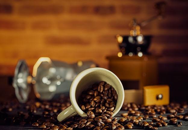 Je chutnější káva robusta, nebo arabica?